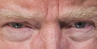President Trump, from his official photo.